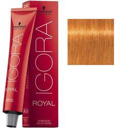 Igora Royal 9-7 Крем-краска Блондин медный, 60 мл